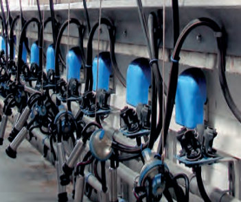 milking equipment