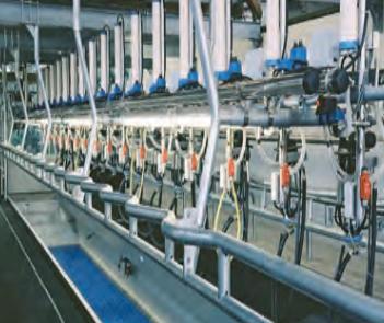Milking Parlor manufacturer